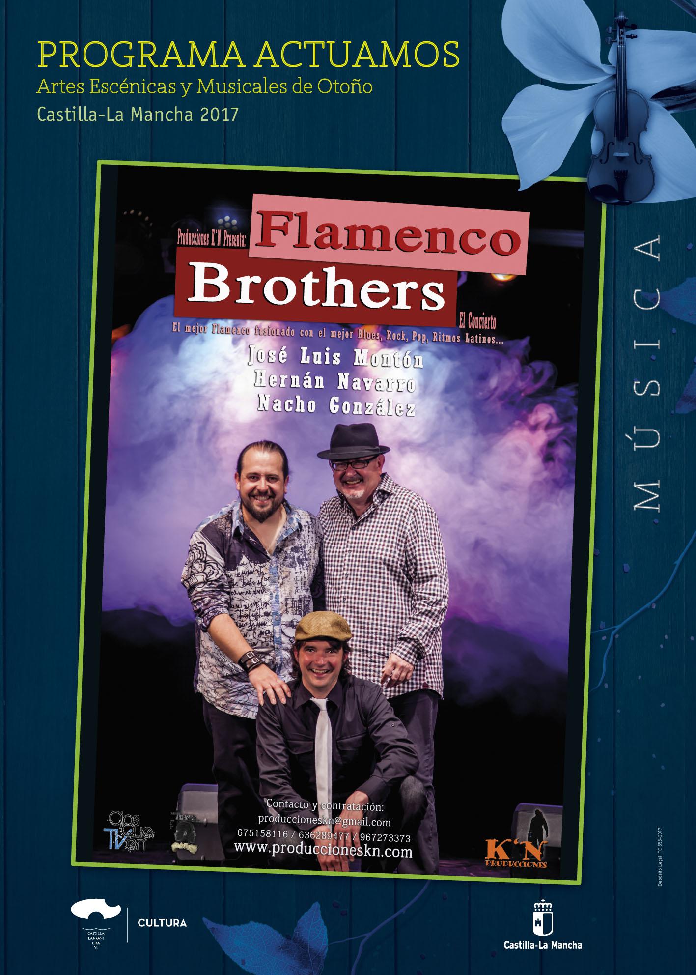 Imagen de la actividad FLAMENCO BROTHERS (Producciones K'N)