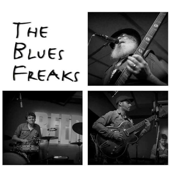Imagen de la actividad The Blues Freaks