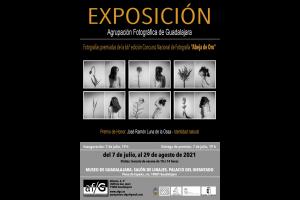 """Imagen de la actividad EXPOSICIÓN TEMPORAL """"66º CONCURSO NACIONAL DE FOTOGRAFÍA ABEJA DE ORO"""""""