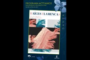 Imagen de la actividad Raíces Flamencas (CIA. FLAMENCA MARTA SERRANO)