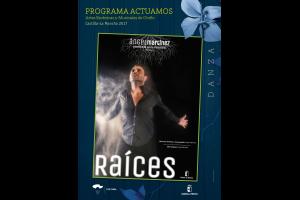 Imagen de la actividad RAÍCES (Compañía Ángel Martínez)