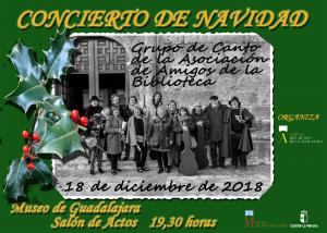 Imagen de la actividad CONCIERTO NAVIDEÑO EN EL MUSEO DE GUADALAJARA
