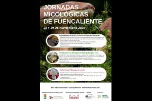 Imagen de la actividad Conoce el mundo de las setas en las Jornadas Micológicas de Fuencaliente
