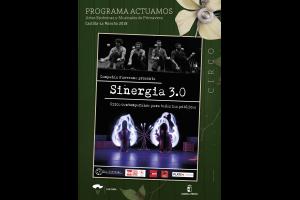 Imagen de la actividad SINERGIA 3.0 (Nueveuno)