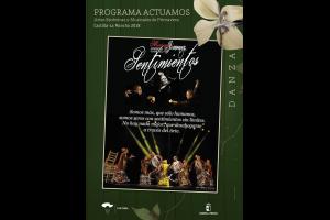 Imagen de la actividad SENTIMIENTOS (Cia. de Flamenco Miriam Jiménez)