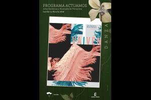 Imagen de la actividad VAIVÉN (Cia. Flamenca Marta Serrano)