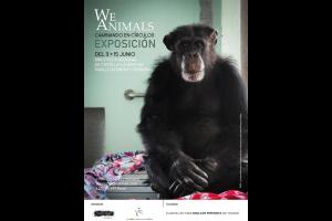 Imagen de la actividad We Animals